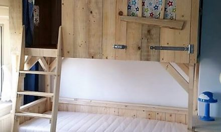 DIY Wood Pallets Tree House Bunk Bed