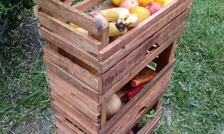 Recreated Wood Pallets Fruit Storage Rack