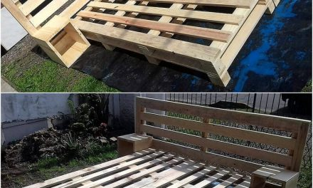 Awesome DIY Wood Pallet Recycled Ideas