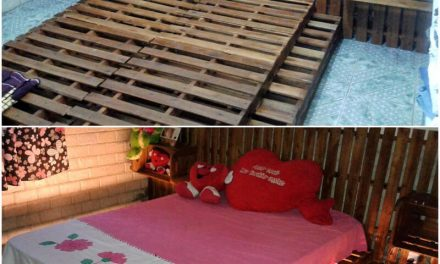 Repurposed Wood Pallet DIY Ideas