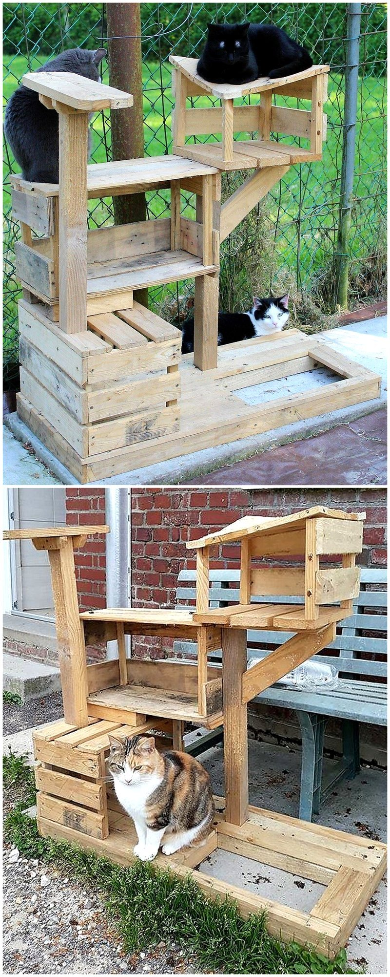 recycled pallets cats playhouse tree house